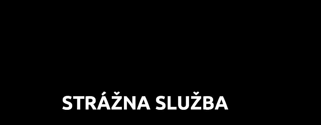 sbsmagis.sk